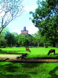 Anuradhapura, la première capitale