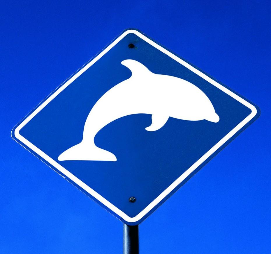 Grenoble Ecole de Management joue à fond la carte de son dauphin