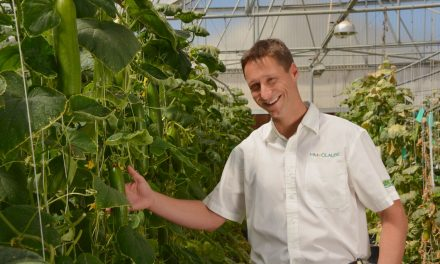 HM.CLAUSE : créateur de variétés potagères
