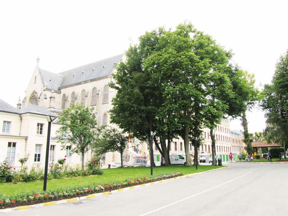 Le lycée Sainte-Geneviève – « Mettre son talent au service des autres » : Jean-Noël Dargnies, Directeur de Sainte Geneviève