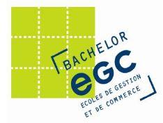 Le Bachelor des EGC à l'ère du digital : Des enseignements adaptés pour former aux nouveaux métiers
