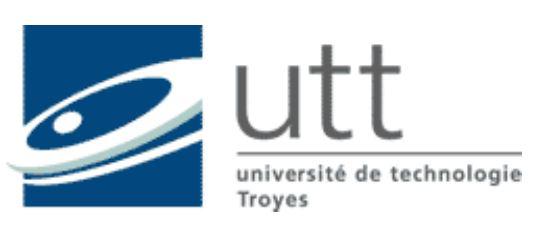 LA FORMATION CONTINUE À L'UTT (Université de technologie de Troyes) UN MODÈLE À LA FOIS NOUVEAU ET DÉMONSTRATEUR