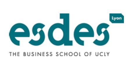 Les jeunes diplômés de l'ESDES confirment leur bonne insertion professionnelle au plus haut niveau depuis 5 ans