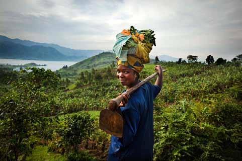 L'Economie Sociale et Solidaire : un nouveau cap à franchir