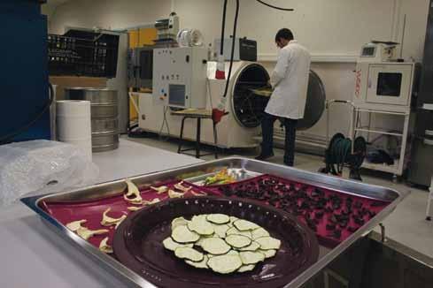 « Les avancées des sciences et technologies de l'aliment »