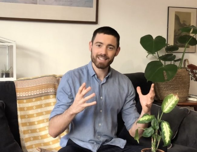 startup GreenPunch