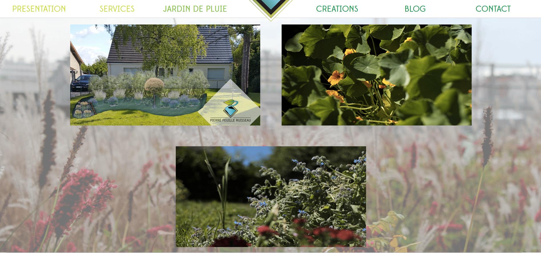 Le jardin de pluie, un jardin écoresponsable paysager