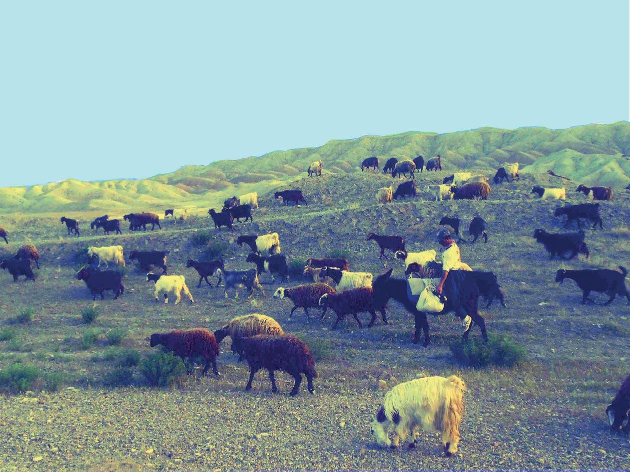 Alamut, le nid d'aigle du Vieux de la Montagne