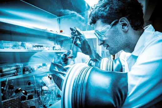 La catalyse à la loupe! Un défi durable pour les chimistes