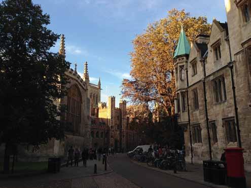 A unique and flourishing adventure at the University of Cambridge