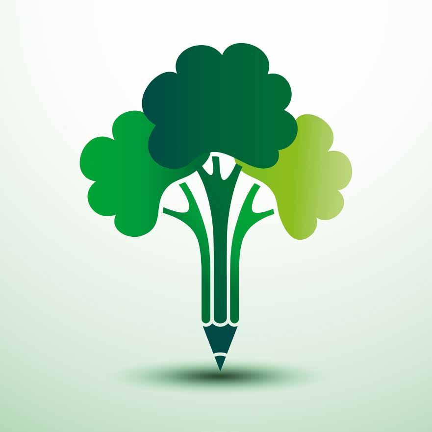 Transition énergétique et croissance verte : les métiers attractifs pour les ingénieurs