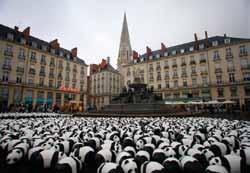 1600 pandas WWF place Royale à Nantes, symbolisant les 1 600 pandas restants dans le monde © Frank Charel