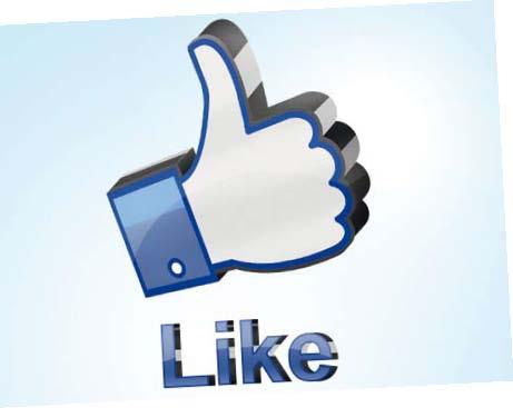 Qu'est-ce qui poussent les internautes à échanger avec une marque via sa page Facebook ?