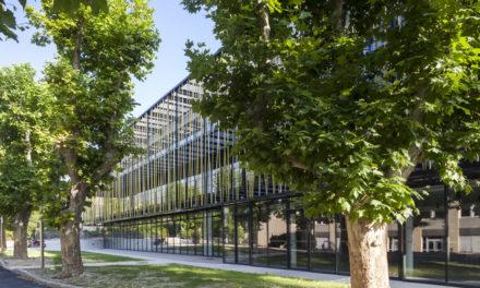 IUT d'Aix-Marseille : « Aider l'étudiant à construire son parcours universitaire »