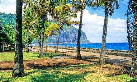 L'EM Normandie implante son Programme Grande Ecole  en alternance à La Réunion