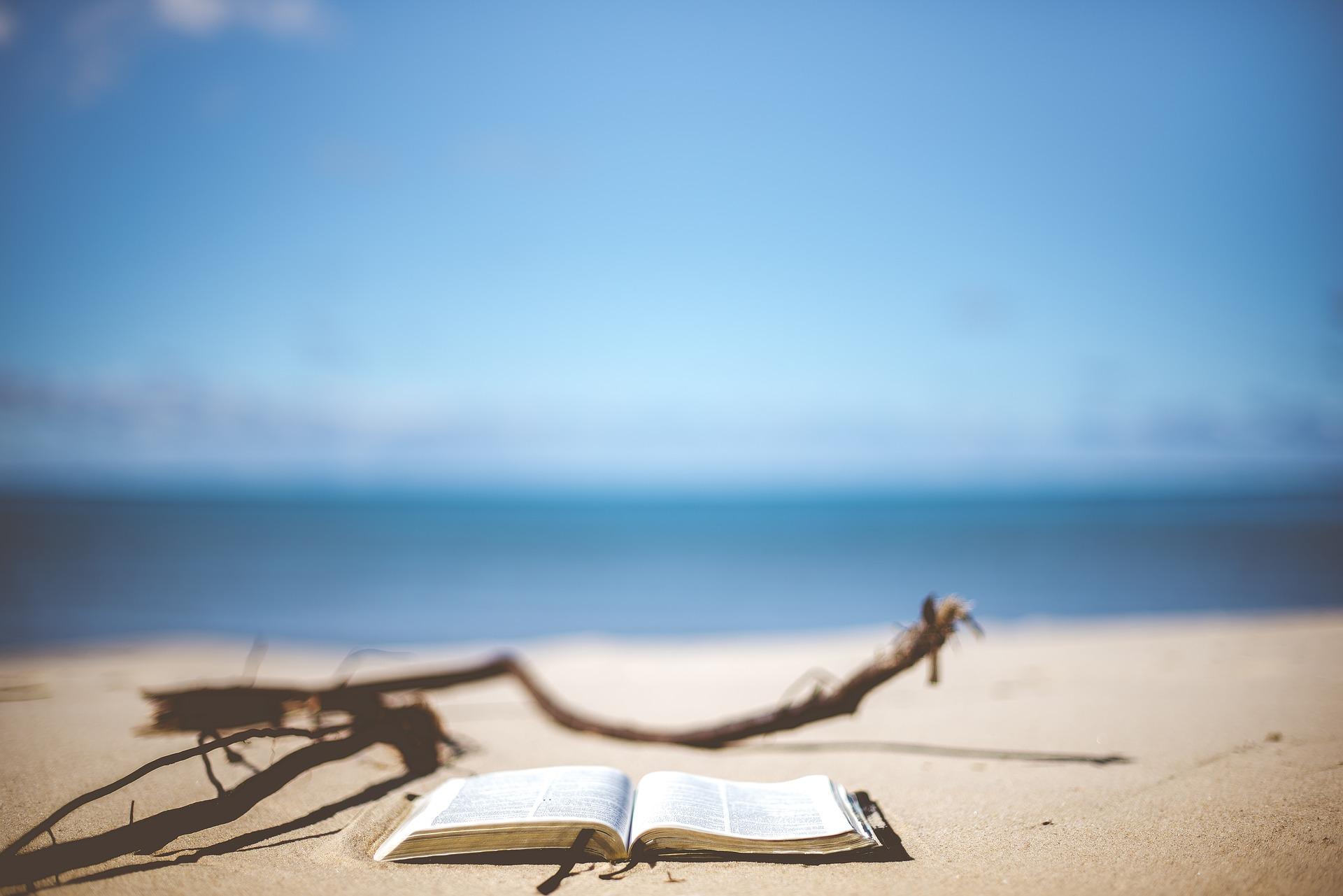Bronzez intelligent avec les cahiers de vacances … pour grands !
