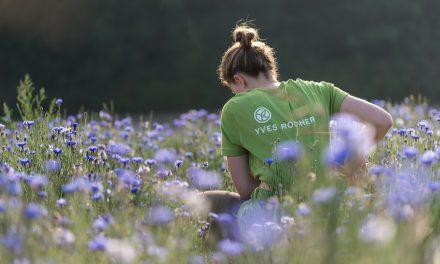 Yves Rocher : le botaniste engagé