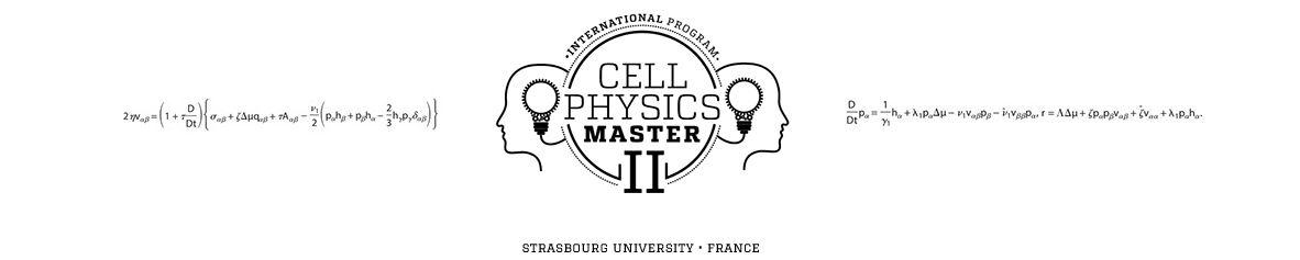 Interface physique / biologie : former une nouvelle génération de scientifiques, traducteurs et créatifs