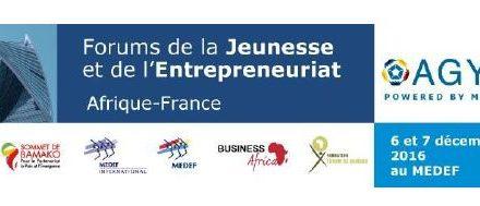 Forum de la Jeunesse et de l'Entrepreneuriat Afrique-France, 6 et 7 décembre: Sous le Haut Patronage de Monsieur François Hollande, Président de la République Française