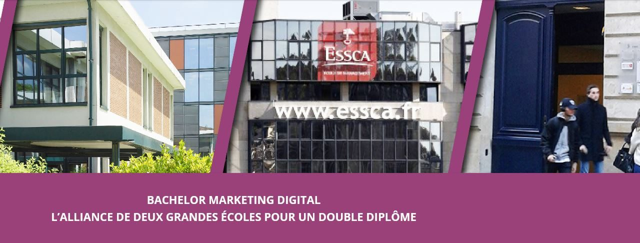 Bachelor Marketing Digital Efrei Paris-ESSCA : une alternative ambitieuse hors Parcoursup