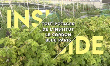 Le toit-potager de l'école Le Cordon Bleu