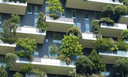 [EXPERTS] Mettre la nature au cœur du métier de directeur immobilier