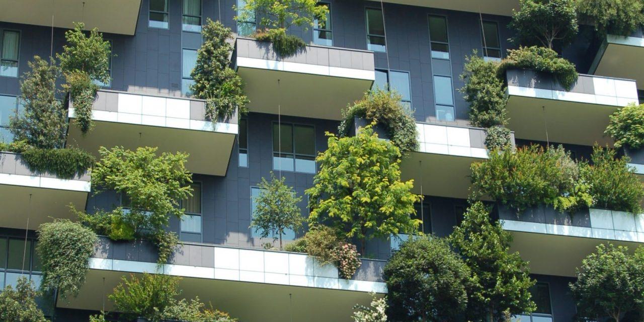[Analyse] Mettre la nature au cœur du métier de directeur immobilier