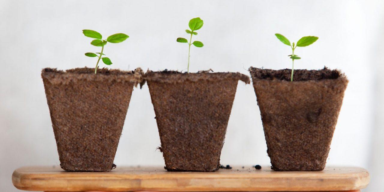 « Start-up Nation » : quel enseignement innovant pour un « life style » entrepreneurial ?