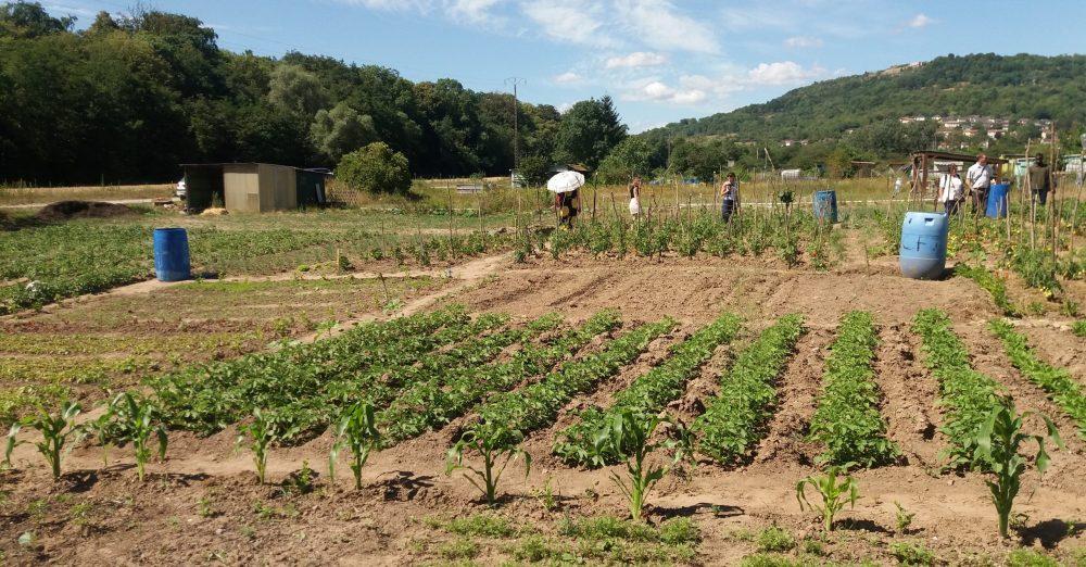 AgroParisTech 100 lieux nourriciers