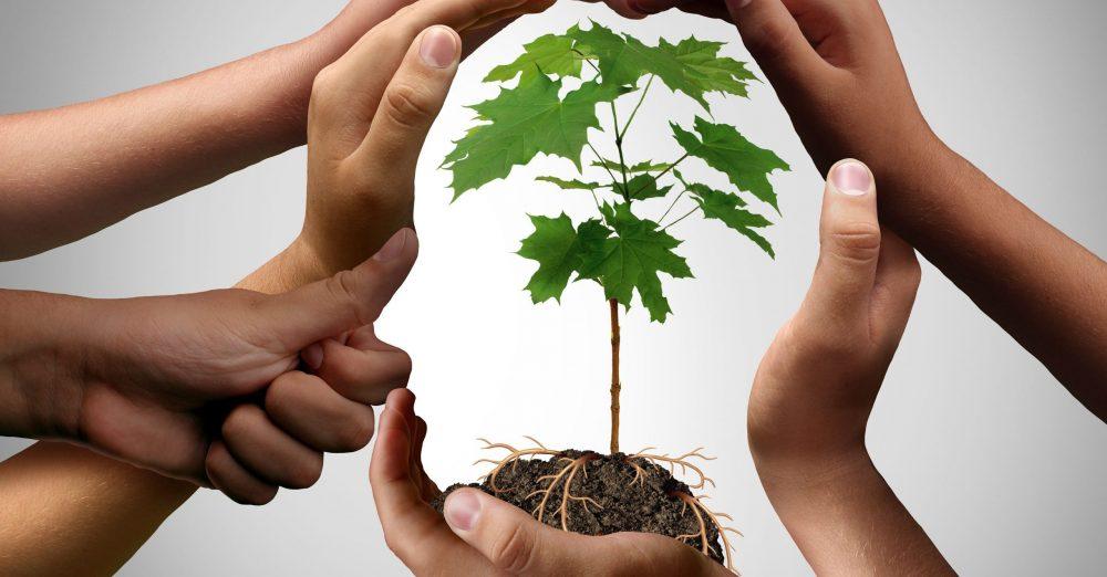 L'Icam dévoile ses orientations stratégiques à horizon 2025 avec pour toile de fond l'écologie intégrale (c) adobestock