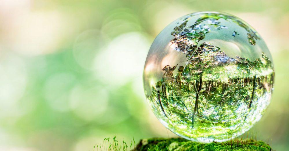 MBS crée la chaire COAST dédiée à la transformation durable de l'économie et de la société (c) adobestock
