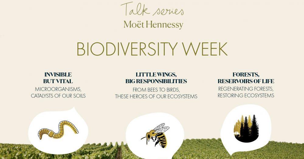 mh-talk-series-biodiversity-week-e1621237988593