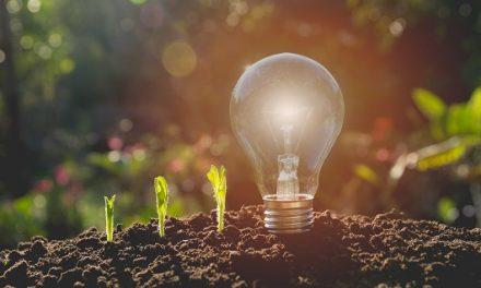 L'École polytechnique s'engage sur le développement durable
