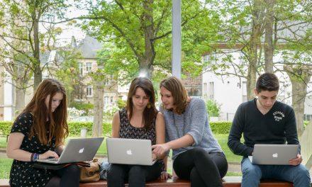 La variété des profils de diplômés d'université séduit les recruteurs