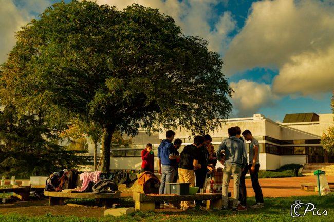 Vie de l'école : et si c'était VRAI ?…
