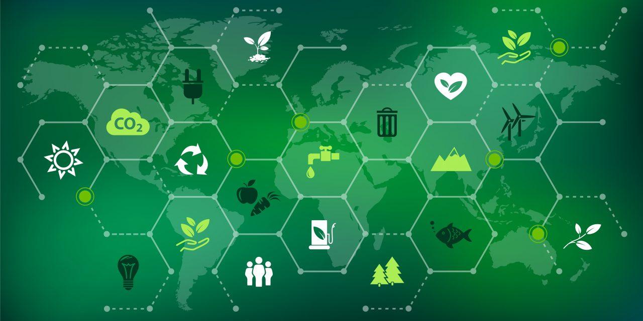 Énergies renouvelables : les innovations industrielles d'IMT Mines d'Albi reconnues première mondiale