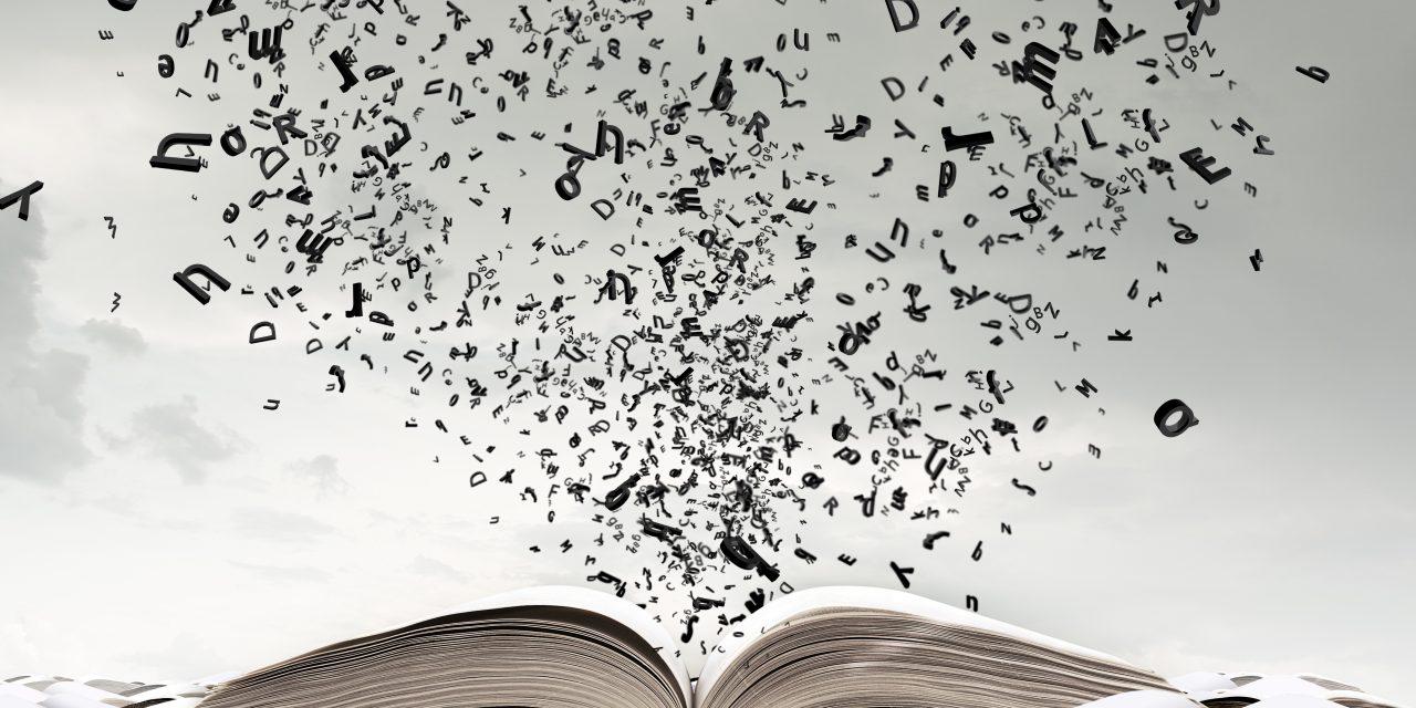 Cursus en lettres modernes à la FLSH : ouverture sur le monde et richesse des enseignements