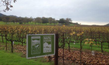 [#Épisode 19] Napa et Sonoma : le vin au Nord de la Silicon Valley