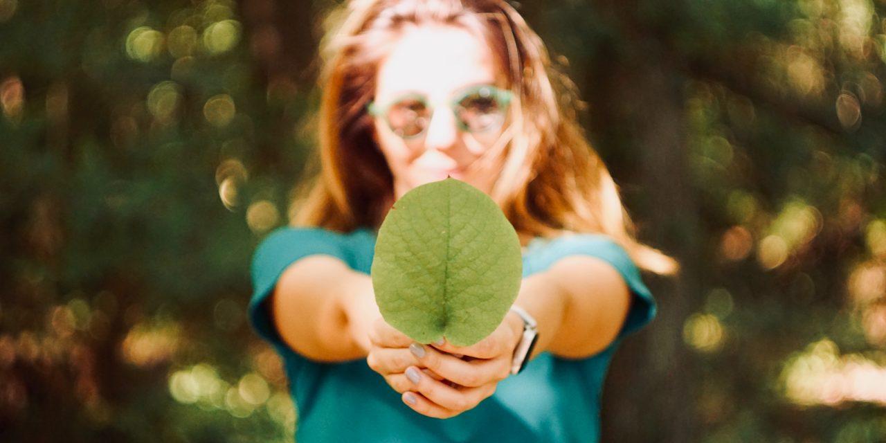 Développement durable, ce qui change en 2020