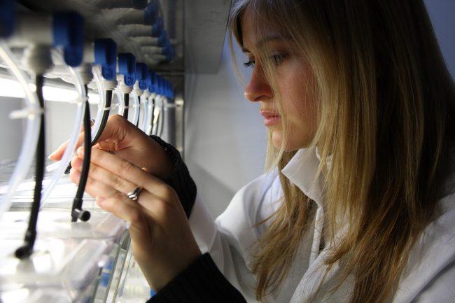 Chez L'Oréal, la beauté est une aventure scientifique