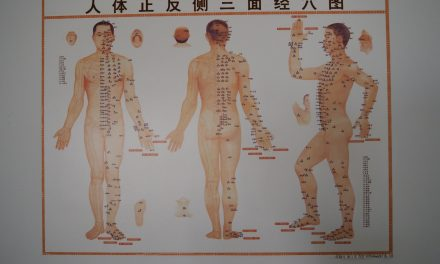 PAMACEE EPISODE 4 : La médecine traditionnelle chinoise au Cap vert, une volonté politique ?