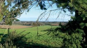 Région de Saint Léonard des Bois