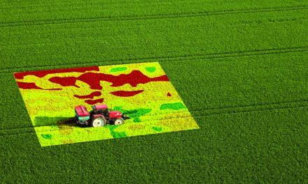 Vivez une aventure agro-industrielle chez Axéréal