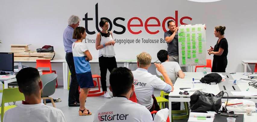 TBSeeds devient l'incubateur référent d'Occitanie pour l'accompagnement de l'entrepreneuriat étudiant
