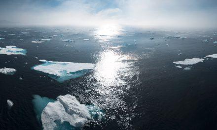 Urgence climatique : universités et grandes écoles se mobilisent aux côtés des étudiants
