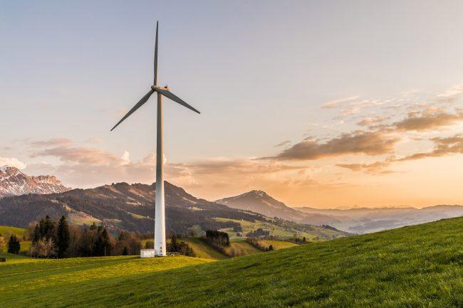 Journée mondiale de l'environnement : 5 projets étudiants engagés